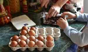 Роспотребнадзор проследит за питанием школьников Поморья
