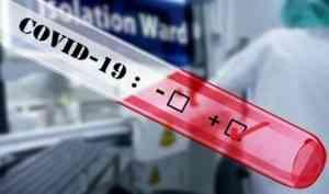 В Архангельской области за сутки зарегистрирован 151 новый случай заражения COVID-19
