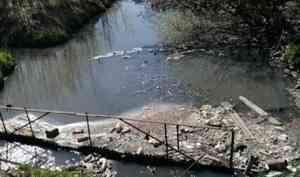 Александр Юфряков об экологических инициативах в Поморье