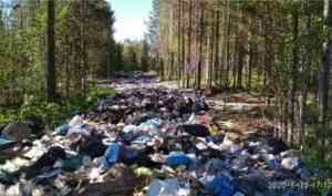 В Онежском районе ликвидированы 12 нелегальных свалок