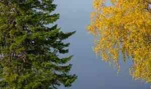 29сентября вАрхангельске будет тепло исолнечно