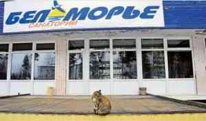 Бывший главврач санатория «Беломорья» получил судебный штраф - 20 тысяч рублей