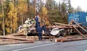 ВУстьянском районе натрассе «Шангалы— Вельск» столкнулись два большегруза. Водитель одного изних погиб.