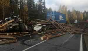 На дороге Вельск—Шангалы бревна с лесовоза убили водителя «Мерседеса»