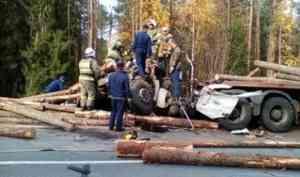 Шофер лесовоза погиб при столкновении с другим большегрузом на трассе в Поморье