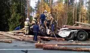 В ДТП на дороге Шангалы-Вельск погиб водитель лесовоза