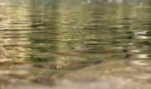 ВОнежском районе водолазы ищут тело девушки, убитой 13 лет назад