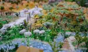 Архангельский педагог создала уникальный макет материка Австралия