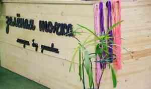 Зашампунем— сосвоей тарой: как архангельский магазин без упаковки борется смикропластиком иподдерживает местных мастеров