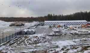 Решение архангельского суда о сносе «мусорных» построек в Шиесе осталось в силе