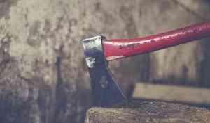 В Устьянах мужчина убил сожительницу топором