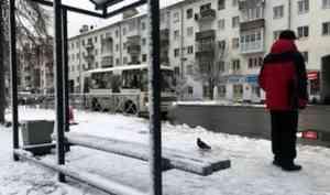 В Архангельске затягивается установка новых бюджетных остановочных павильонов