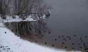 28 ноября в Архангельске будет по-зимнему морозно