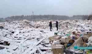 В Архангельской области началась проверка полигонов и площадок временного накопления отходов