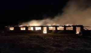 При пожаре в частной ферме в Вельском районе погибли животные