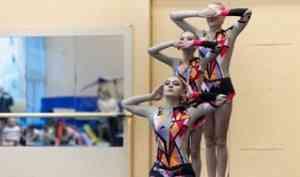 В столице Поморья соревновались акробаты Архангельской области