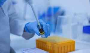 Владимир Путин поручил с7декабря начать массовую вакцинацию отновой коронавирусной инфекции