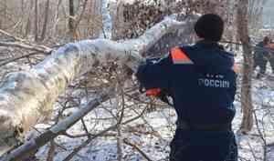Спасатели МЧС России продолжают очищать ванты моста на остров Русский