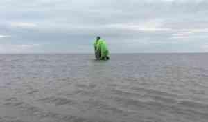 В Архангельской области ведется оценка загрязнения Белого моря микропластиком
