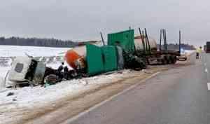 Встолкновении двух грузовиков натрассе М8 виновата корова