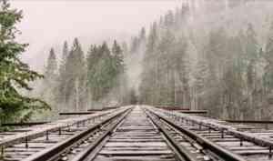 Ночью в Архангельской области поезд столкнулся в автомобилем