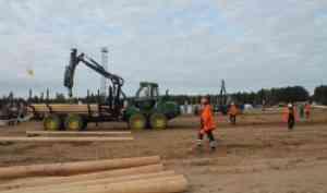 Проект САФУ «Кадровый резерв лесной отрасли: перезагрузка» получил Президентский грант