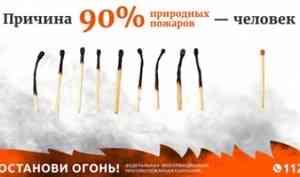 Подведены итоги всероссийской информационной кампании «Останови огонь!» за 2020 год