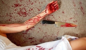 Жительница Плесецкого района пыталась убить старшую сестру, которая увела у неё возлюбленного