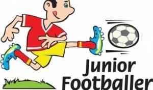 Юные спортсмены Поморья могут принять участие в крупнейшем в России детском футбольном фестивале