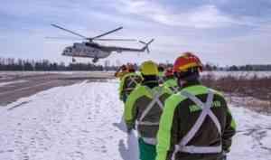 Парашютисты Архангельской авиалесоохраны осваивают навыки выживания в экстремальных условиях