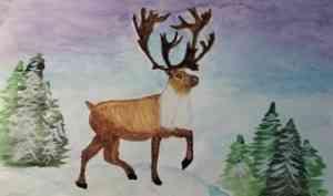 Подведены итоги областного природоохранного конкурса «Гордость северной тайги»