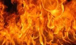 В Плесецком районе при пожаре погибли две женщины