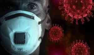 В Поморье за сутки выявили 129 новых случаев COVID-19