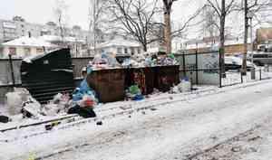 Проблему раздельного сбора мусора обсудят в Архангельске в марте