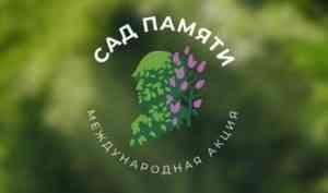 Поморье готовится к международной акции «Сад Памяти»