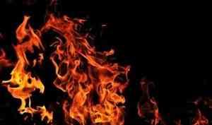 ВСеверодвинске пожарные спасли отогня мужчину исобаку