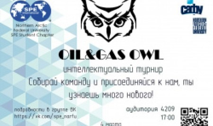 В САФУ прошла игра «Oil & gas Owl»