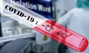 В Архангелськой области за сутки выявлено 115 новых случаев заражения COVID-19