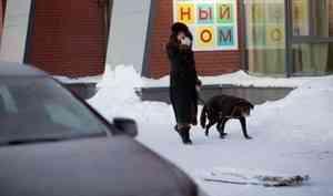 Вночь с8 на9марта вАрхангельске ожидается похолодание до-35 °С