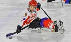 В Архангельске впервые пройдет фестиваль по следж-хоккею