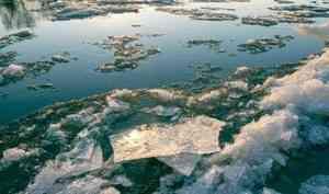 Лёд тронулся: голова ледохода проходит Котлас