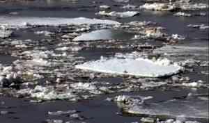 Архангельскую область ждёт спокойный ледоход. Но это не точно