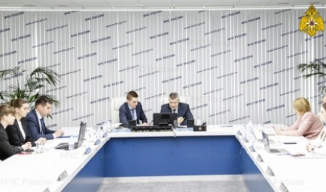 МЧС России приняло участие в заседании Рабочей группы БРИКС по управлению рисками стихийных бедствий