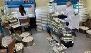 Поморье и Татарстан договорились о сотрудничестве в сфере семеноводства