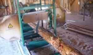 В Вилегодском районе рабочему отрезало ступню в деревообрабатывающем цехе
