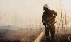 С начала года подразделения МЧС России 12,5 тысяч раз выезжали на тушение палов сухой растительности