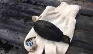 Взрывотехники ОМОН обезвредили найденную под Северодвинском столетнюю гранату