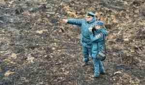 Дознаватели МЧС выяснили, что стало причиной пожаров в Красноборском и Няндомском районах