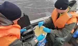 Архангельские ученые получили еще один грант на исследования в Арктике