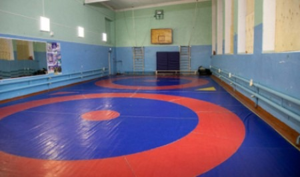 В Новодвинске создается центр спортивной борьбы
